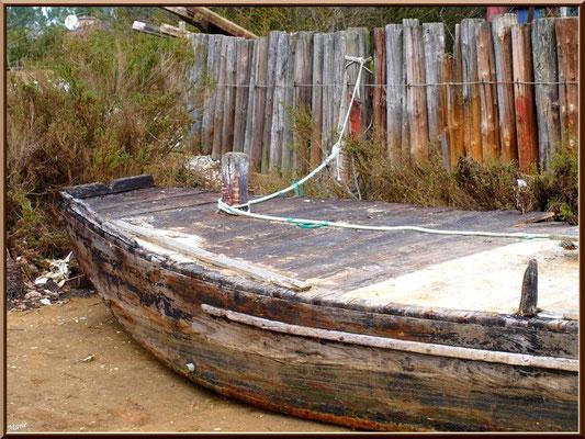 Vieux chaland à quai au port ostréicole du Cap Ferret (à marée basse)