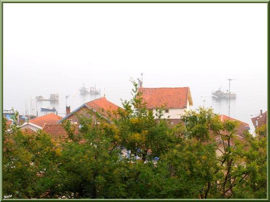 """Le villagede L''Herbe , vue panoramique depuis le rond-point """"Ile aux Oiseaux"""", Bassin d'Arcachon (33)"""