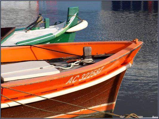 Proues de bateaux à quai