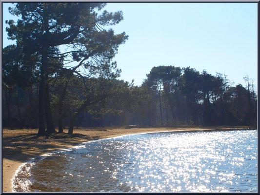 Reflets d'argent sur le lac Sanguinet (Landes)