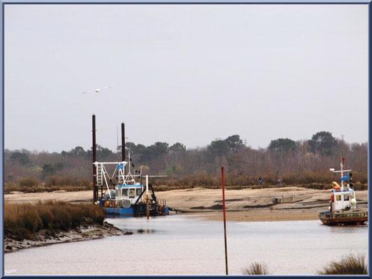 Drague pour lutter contre l'ensablement côté Bassin, Sentier du Littoral, secteur Moulin de Cantarrane, Bassin d'Arcachon