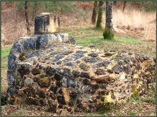 La Fontaine Saint Jean à Lamothe, vue de dos, Commune du Teich (Bassin d'Arcachon) - photo prise en hiver