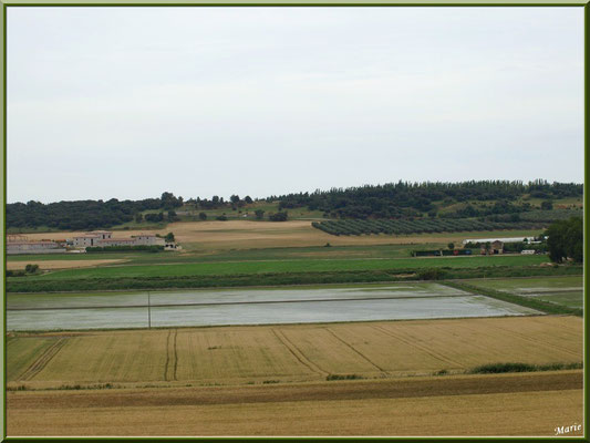 Aqueduc à Fontvielle dans les Alpilles (Bouches du Rhône), paysage et panorama en son extrémité : champs et rizières