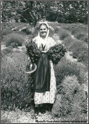 Jeune cueilleuse de lavande (carte postale ancienne, collection privée)
