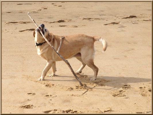 Tina joue sur la plage