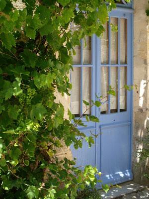 Porte bleue à la vigne à Talmont-sur-Gironde (Charente-Maritime)