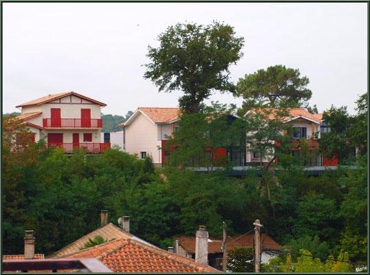 """Arcachon, """"Ville d'Automne"""", villas avec vue sur le Bassin"""
