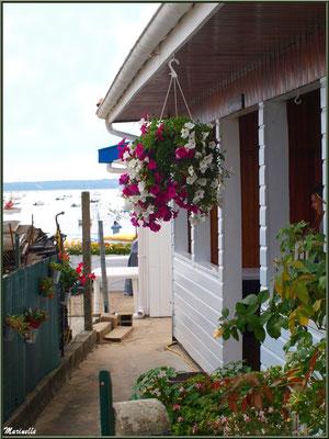 Maison en bordure de la plage et du Bassin, Village de L'Herbe, Bassin d'Arcachon (33)
