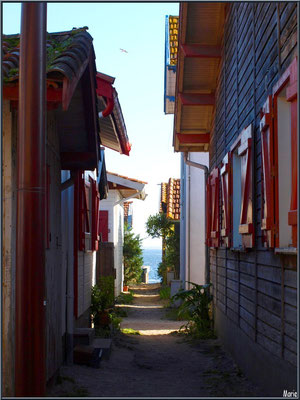 Ruelle vers le Bassin, village de L'Herbe, Bassin d'Arcachon (33)