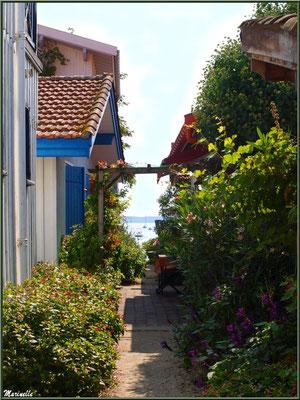 Ruelle fleurie menant au Bassin, Village de L'Herbe, Bassin d'Arcachon (33)