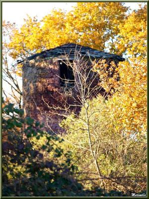 Le Moulin de Cantarrane et sa végétation automnale, Sentier du Littoral Bassin d'Arcachon