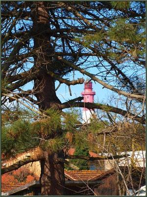 Le phare depuis le village ostréicole (Cap Ferret)