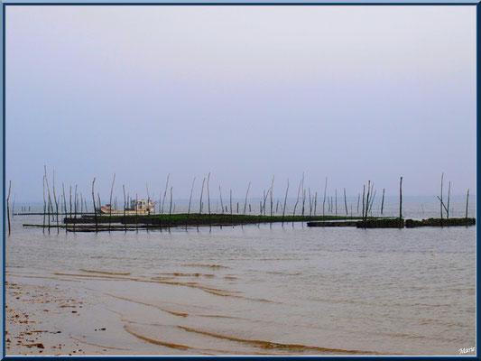 Vue sur un bateau d'ostréiculteur dans parc à huîtres et le Bassin, village de L'Herbe, Bassin d'Arcachon (33)