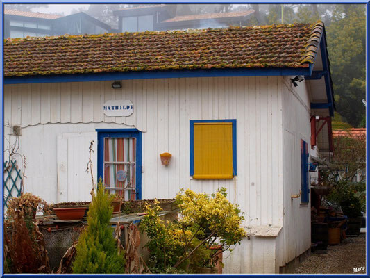 Maison cabane Mathilde, village de L'Herbe, Bassin d'Arcachon (33)
