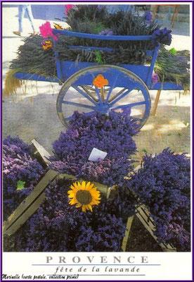 Fête de la Lavande (carte postale, collection privée)