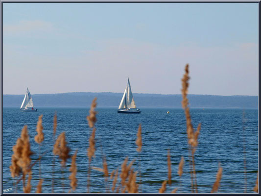 Voilier sur le Lac de Sanguinet (Landes)