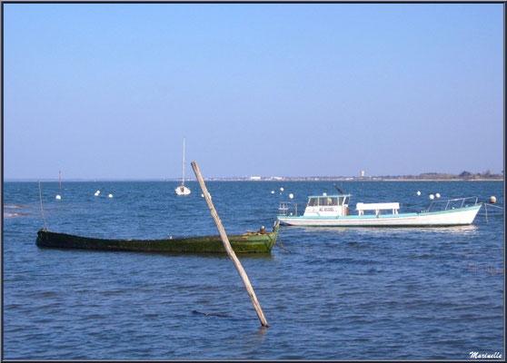 """Arcachon, """"Ville d'Automne"""" et son petit port de l'Aiguillon avec ces bateaux"""