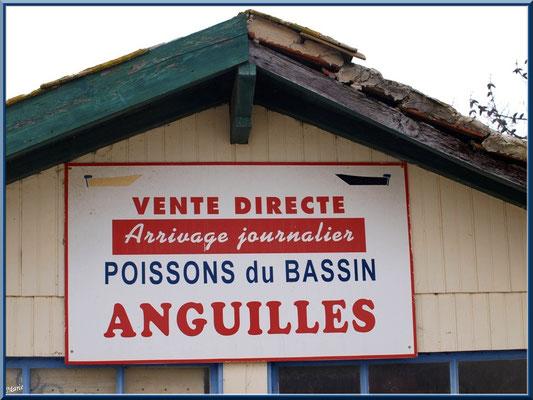 Cabane de vente d'anguilles au port ostréicole (Cap Ferret)