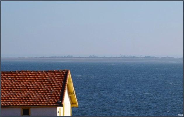 Un toit sur le Bassin et l'Ile aux Oiseaux à l'horizon, village de L'Herbe, Bassin d'Arcachon (33)