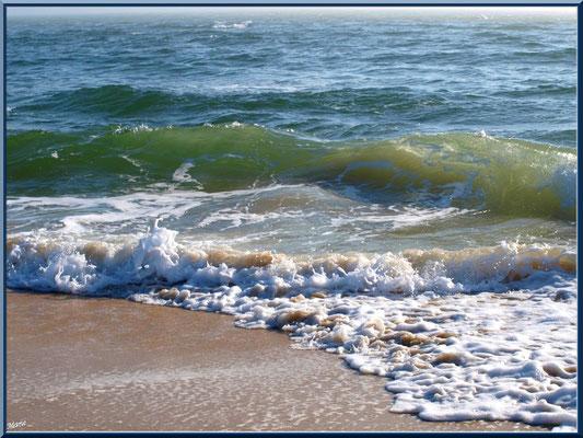 """Bord de plage et vagues à """"La Pointe"""" au Cap ferret"""