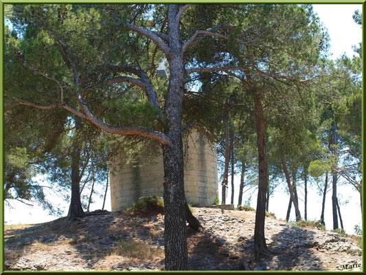 Le Moulin Bretoule derrière les pins