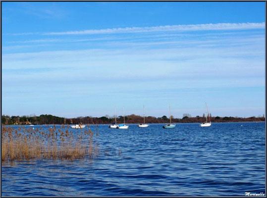 Bateaux sur le Lac de Cazaux (La Teste de Buch, Bassin d'Arcachon)