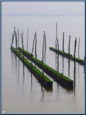 Vue sur le Bassin et les parcs à huîtres depuis le quartier Chapelle Algérienne, village de L'Herbe, Bassin d'Arcachon (33)