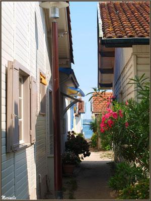 Ruelle menant au Bassin, Village de L'Herbe, Bassin d'Arcachon (33)