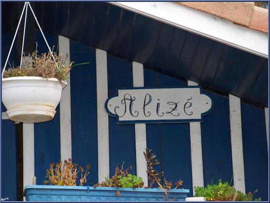 """Cabane 49 """"Alizé"""" au port de Biganos (Bassin d'Arcachon)"""