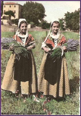 Cueillette de la lavande (carte postale ancienne 1967, collection privée)