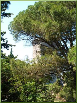 La tour Anglica
