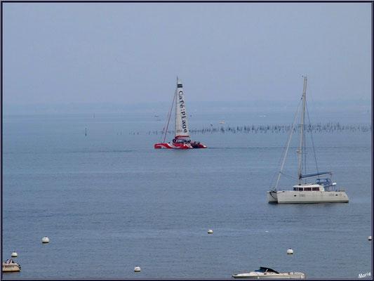 """Arcachon, """"Ville d'Automne"""", au matin, catamaran """"Café de la Plage"""" et autres bateaux sur le Bassin"""