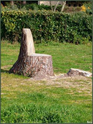 Pin reconverti en siège en bord de plage de Claouey (Bassin d'Arcachon)