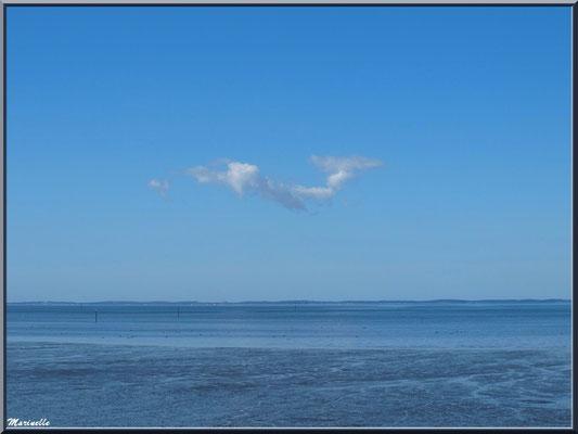 Quand le ciel et la mer se confondent, Sentier du Littoral, secteur Moulin de Cantarrane, Bassin d'Arcachon