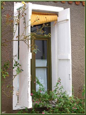 Fenêtre au store en bois tressé, village de L'Herbe, Bassin d'Arcachon (33)