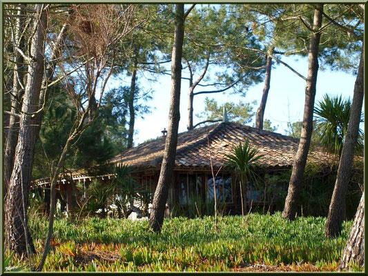 """Belle villa en bois sur la dunette en bordure de la digue """"Bartherotte"""" (Cap Ferret)"""