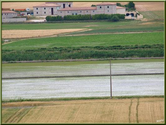Aqueduc à Fontvielle dans les Alpilles (Bouches du Rhône), paysage et panorama en son extrémité : propriété agricole et rizière (vue zoomée)