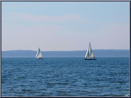 Voiliers sur le Lac de Sanguinet (Landes)