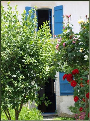 Maison et son allée fleurie à Talmont-sur-Gironde (Charente-Maritime)