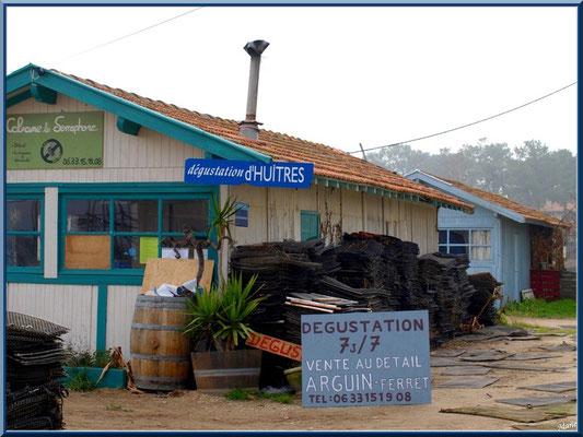 Cabanes ostréicoles et dégustations d'huîtres au port ostréicole du Cap Ferret