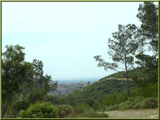 Sentier, garrigue et vue panoramique des hauteurs du massif de La Caume dans les Alpilles (Bouches du Rhône)