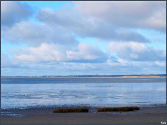 Le Bassin à marée basse, en bordure, avec ciel de traine, vu depuis le Sentier du Littoral, secteur Moulin de Cantarrane, Bassin d'Arcachon