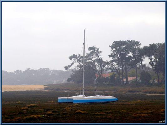 La conche à marée basse et catamaran dans la brume (Cap Ferret)
