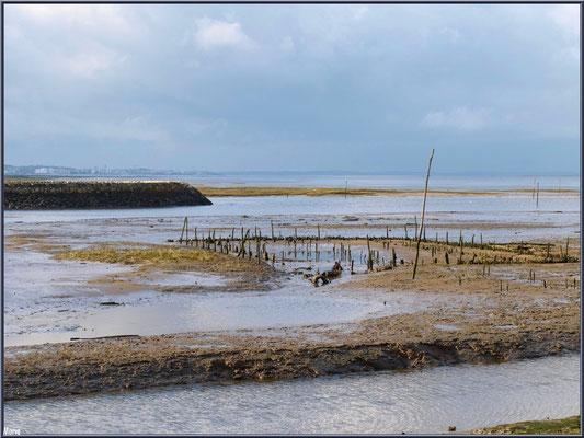 Anciens parc à huîtres, jetée Port Passerelle, Arcachon à l'horizon et le Bassin