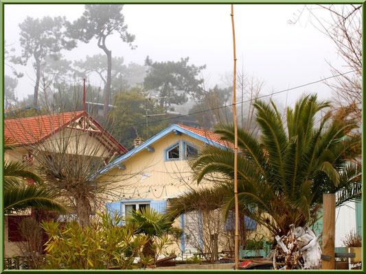 Maisons dans le village sous la brume, village de L'Herbe, Bassin d'Arcachon (33)