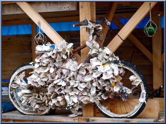 Vélo aux huîtres (ce dernier est resté longtemps immergé dans le Bassin !), village de L'Herbe, Bassin d'Arcachon (33)
