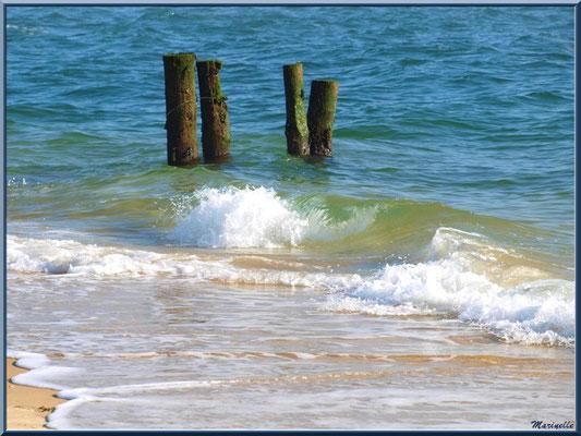 """""""La Pointe"""" au Cap Ferret, bord de plage et vagues - Bassin d'Arcachon (33)"""