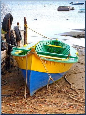 Pinassotte à marée basse (Arcachon)