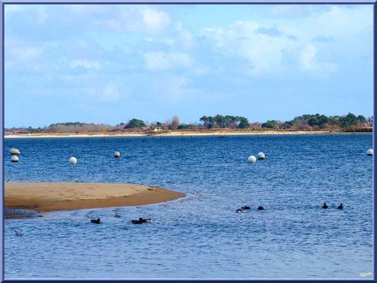 """Arcachon, """"Ville d'Automne"""" et son petit port de l'Aiguillon, le Bassin avec en face plage port du Rocher La Teste et La Hume"""