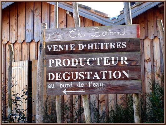 Panneau dégustation d'huîtres et cabane sur le port ostréicole (Cap Ferret)